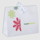 Paper Bags with Envelope Flap 2